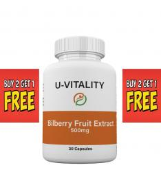 bilberry_fruit_extract1